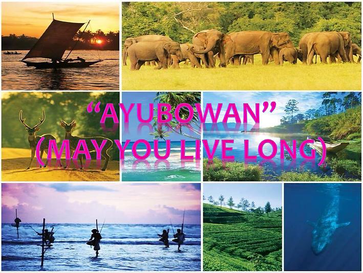 ayubowanPic.PNG