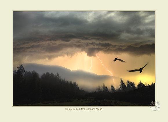 Landschafts- & Naturfotografie