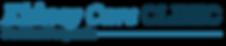 kidneycare_logo.png