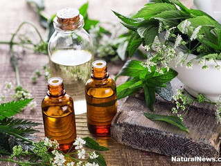6 Essential Oils That Can Help Curb Anxiety