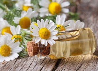 Here's a surprising discovery about chamomile: It may help with diabetes management
