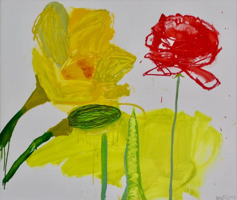 Daffodil and Ranunculus SOLD Oil on Board 98 x 82 cm