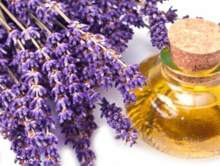 Rosemary and Lavender Oils Do Entirely Different Things to Mood and Mind