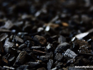 Discover Four New Ways to Use Charcoal–And They Don't Include Barbecuing