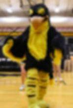 Go-Hawk Mascot