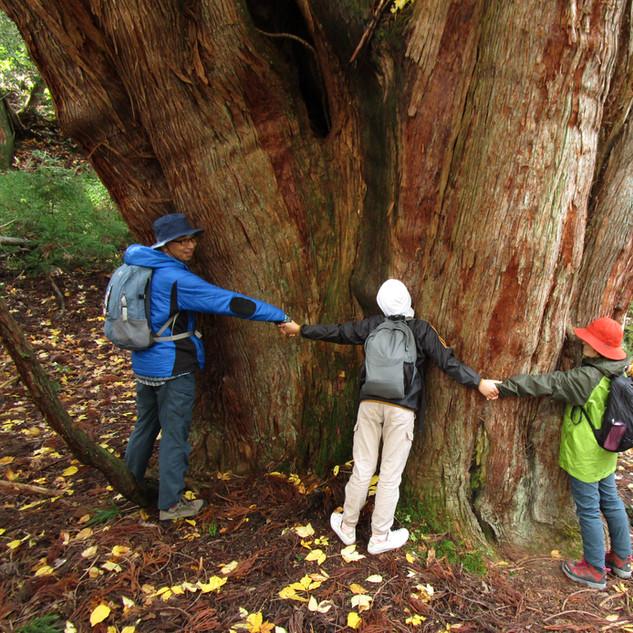 京大芦生の森ツアー
