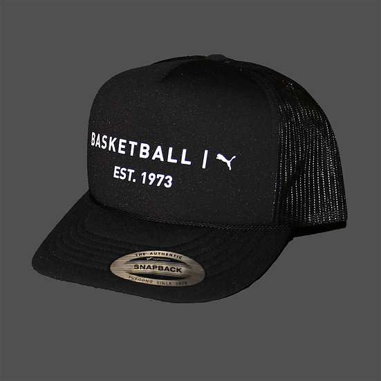 022913 01 Basketball FB Cap