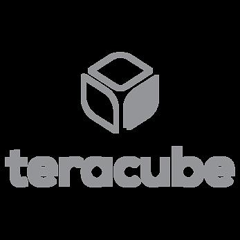Teracube Logo2.png