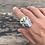 Thumbnail: Apis Bull Ring