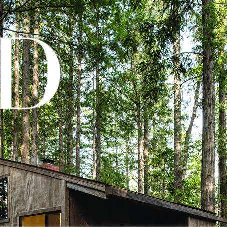 Architectural Digest Russia | Vacation exchange: a secluded house in the California forest