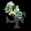 SF Logo - Grey.png
