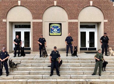 Search & Rescue K-9 Teams Graduate