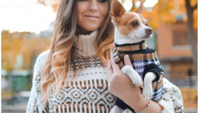 Watch how Gen Z'ers are accelerating the growth in the Pet Humanisation Megatrend
