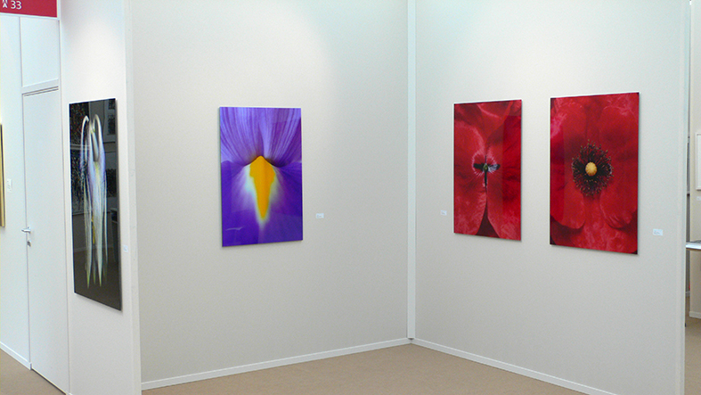 vienna art fair, 2009