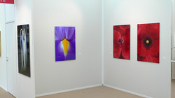 vienna art fair, 2009