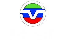 sinovision official logo_2.png