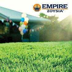 Empire, EMpire Zoysia, Zoysia, Turf NT, Turf, Darwin, Buy Turf, Garden, Lawn, Lawn Variety, Grass, Grass Variety, Tropical, Middle POint, Palmerston, Zuccoli, Irrigation,