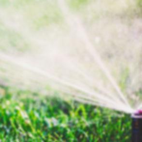 Water Sprinkler_edited_edited.jpg
