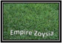 empire zoysia nt turf lawn darwin northern territory