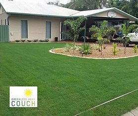 Greelees Park Couch, Couch Turf NT, Turf, Darwin, Buy Turf, Garden, Lawn, Lawn Variety, Grass, Grass Variety, Tropical, Middle POint, Palmerston, Zuccoli, Irrigation,