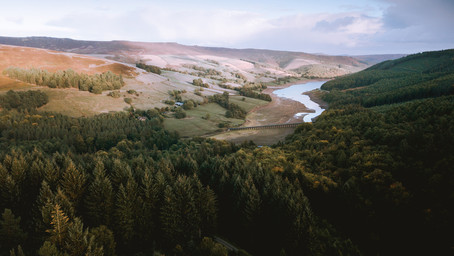 Our most popular walks in 2020