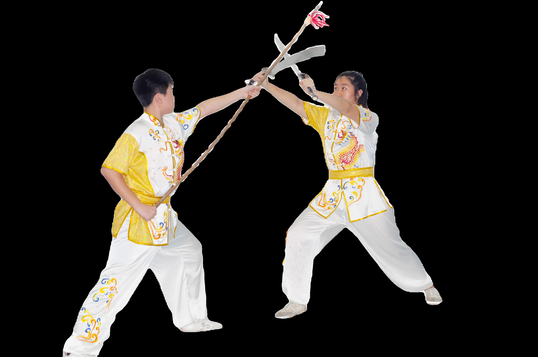 Advance Wushu