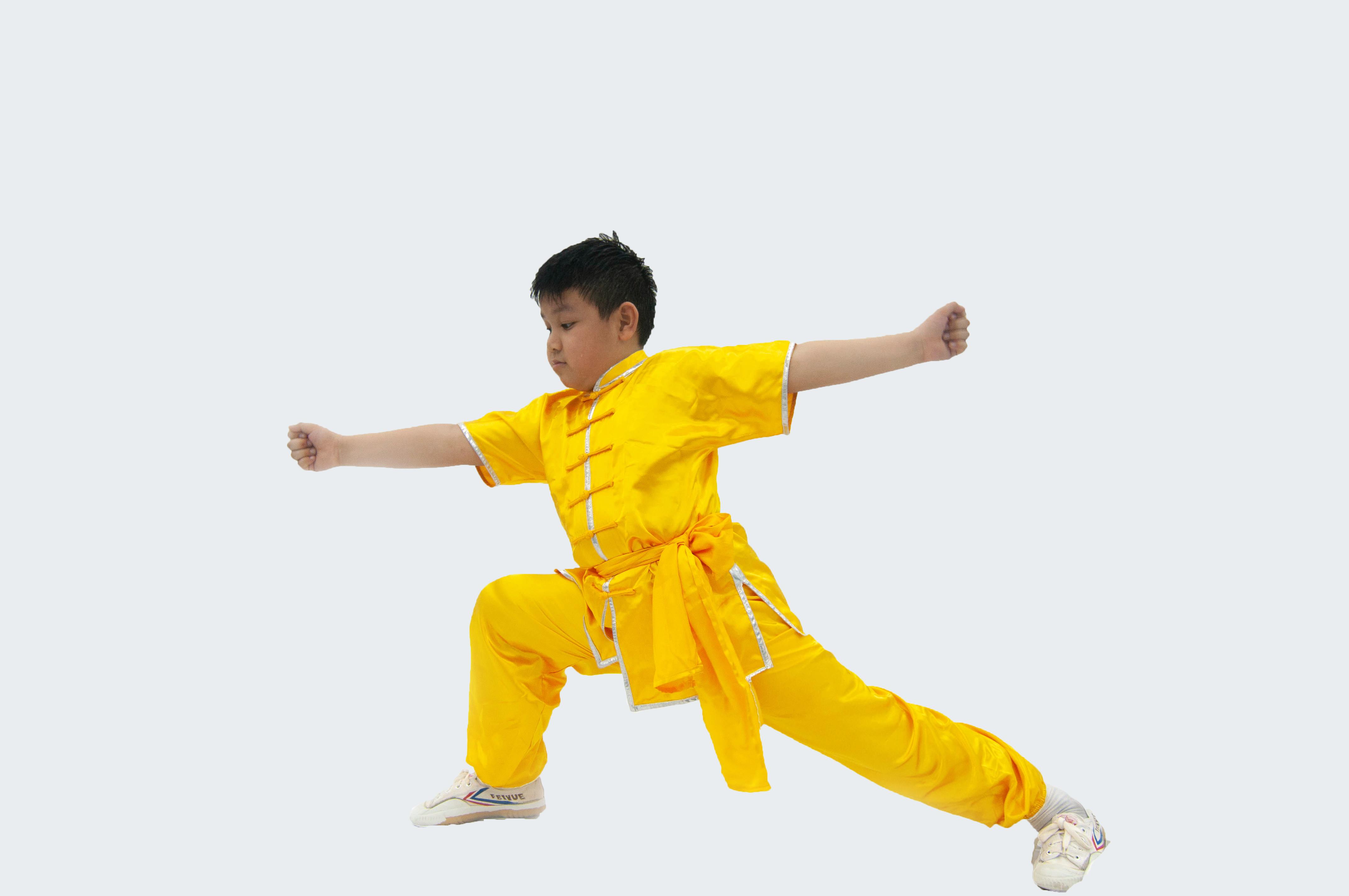 Wushu Kids (6 to 8)