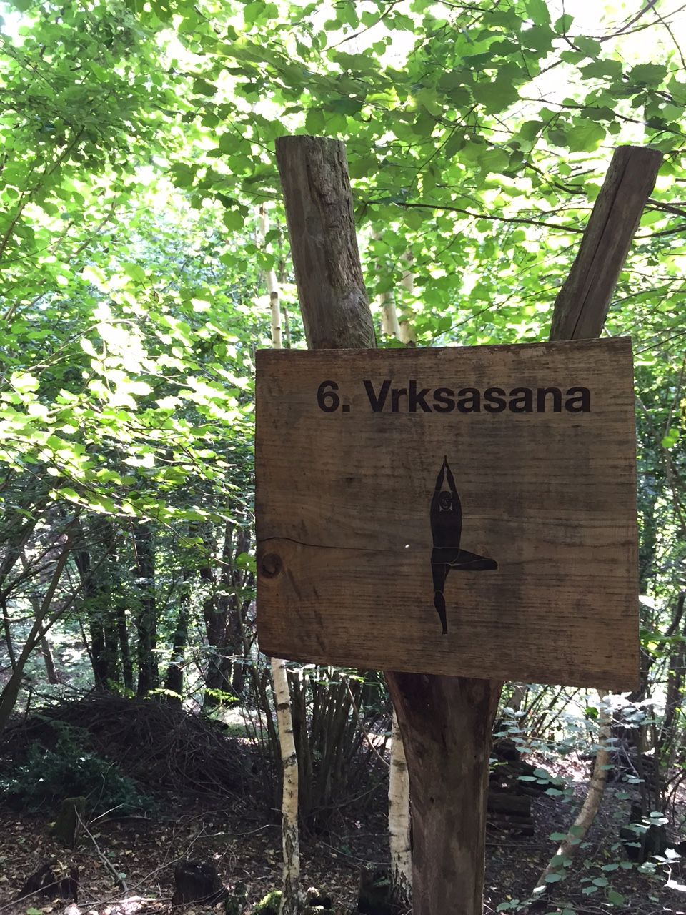 le sentier du yoga, au Tessin
