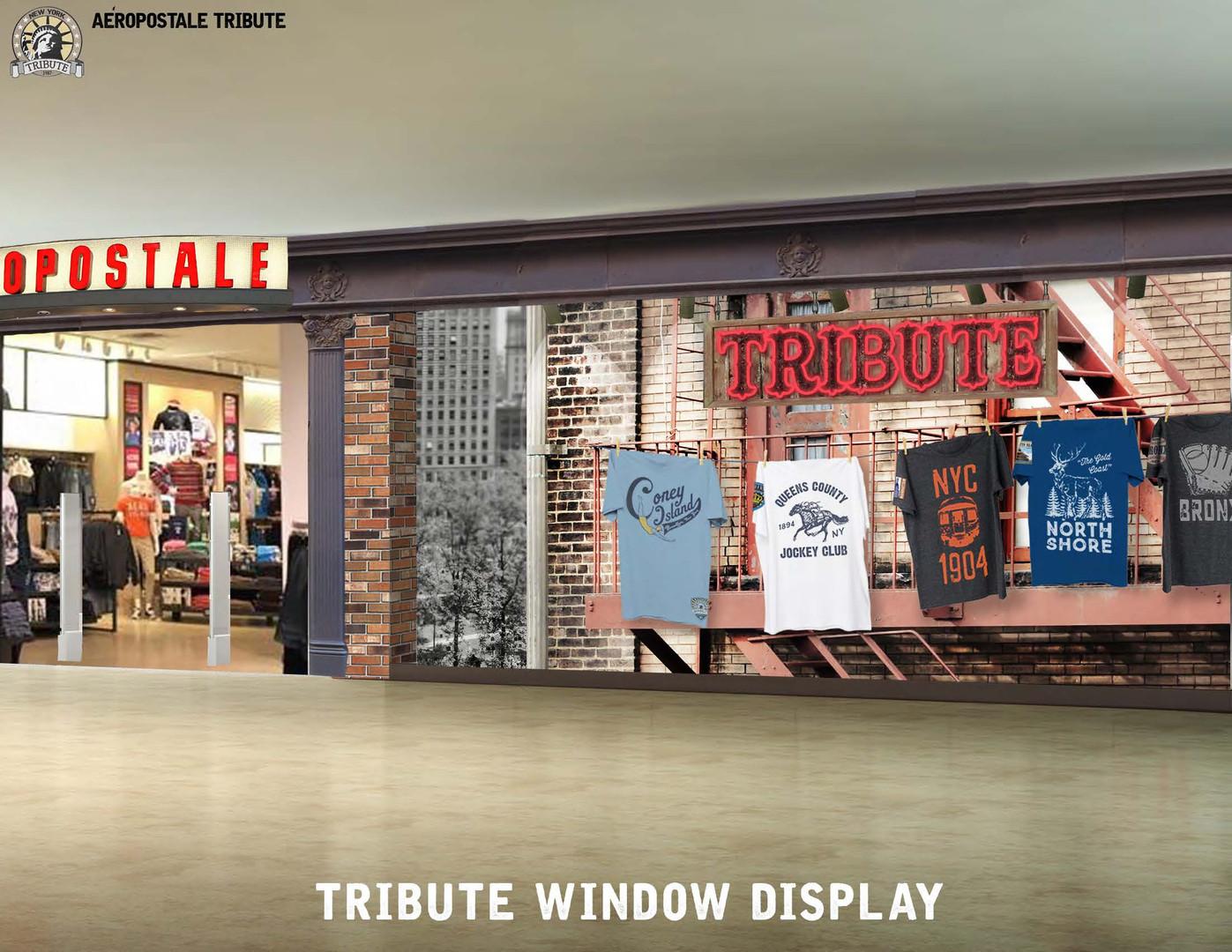 Store front display concept development