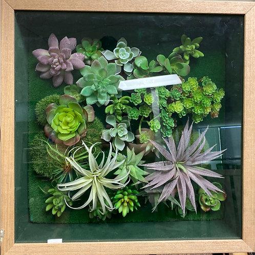 """Framed Green Art 17""""x17"""""""