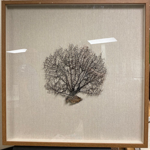 Renwil Framed Art