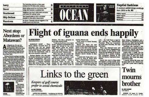 Flight of iguana ends happily
