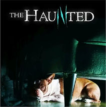 "Psychic Barbara Mackey has been featured on Animal Plant's ""The Haunted"""