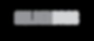 Nolden logo grey-01.png