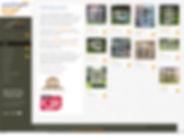 website-pp.jpg