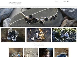 website-sw.jpg
