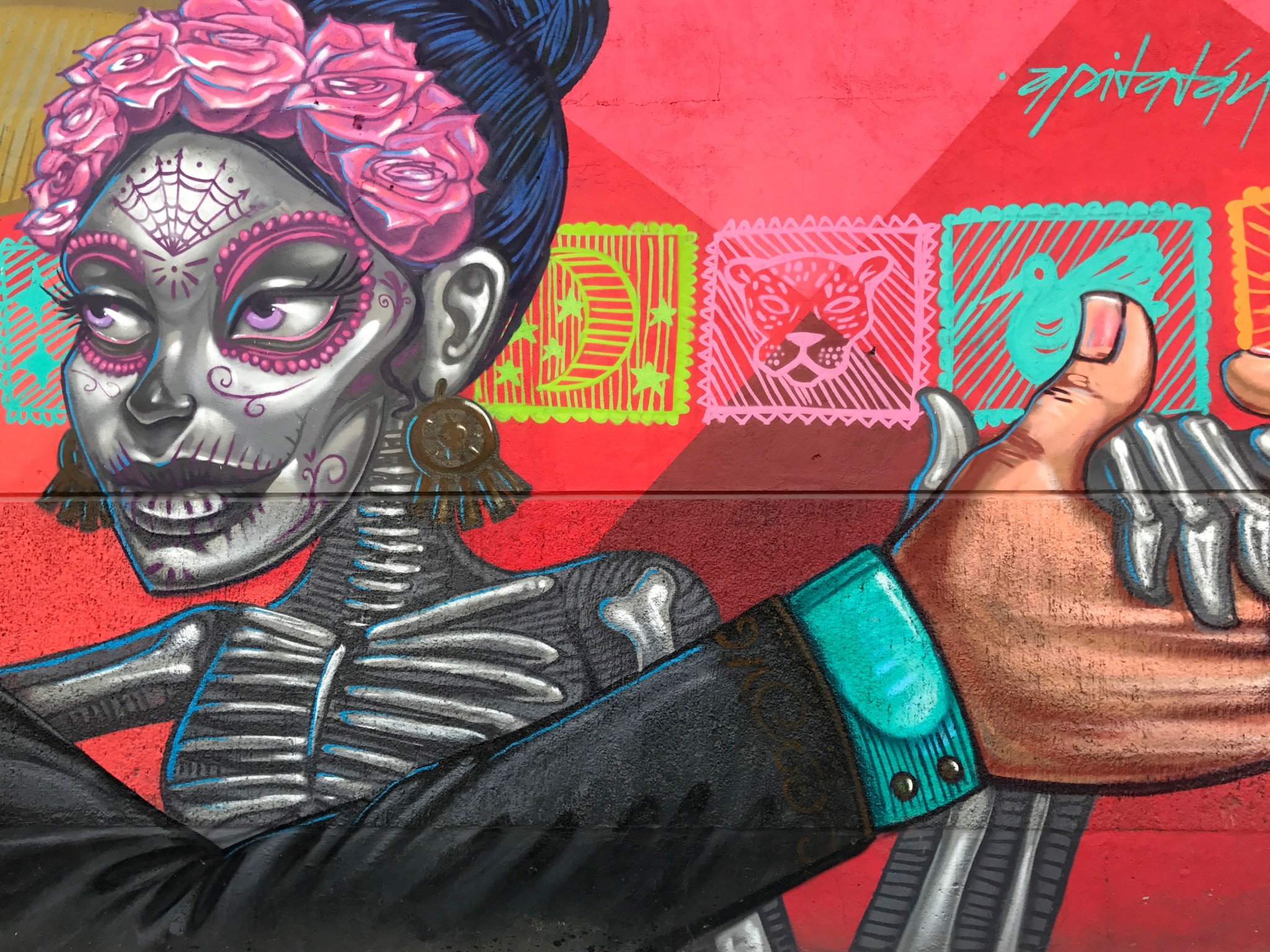mexico_city_street_art_apitatan