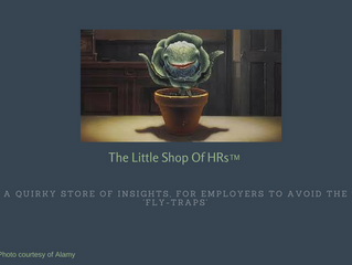 New Webpage - Little Shop Of HRs™