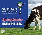 Web-Spring-Starter-Dairy.jpg