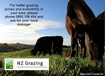 NZGx.PNG