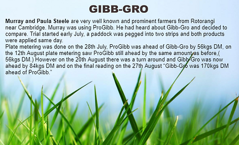 gibb8.PNG