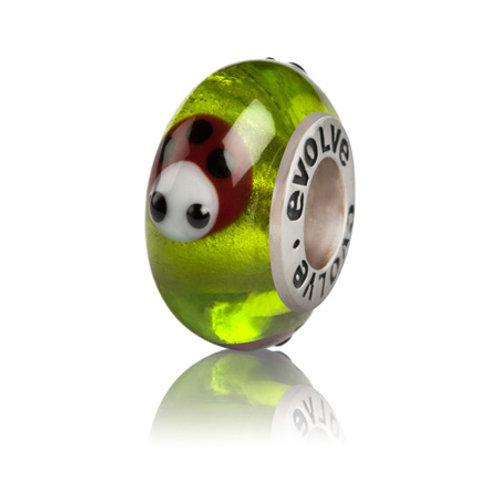 E63 ladybird Luck
