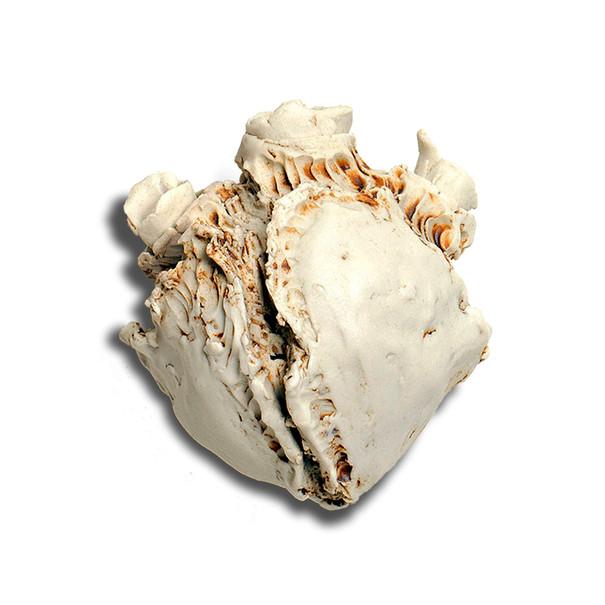 Bone Heart (sold)