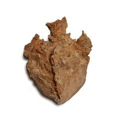 Golem's Heart