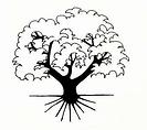 Dobson Montessori.webp