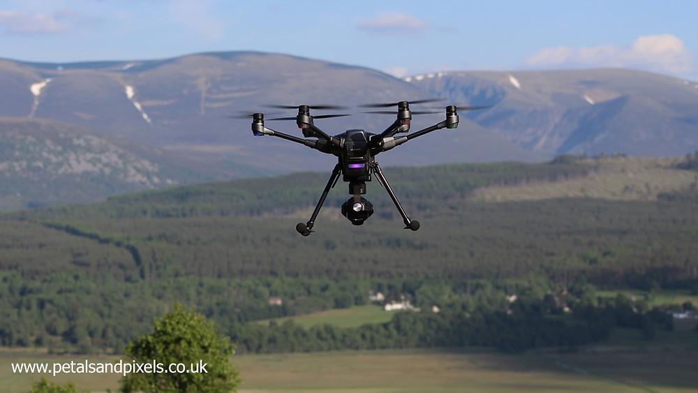 Aerial photography, Petals and Pixels
