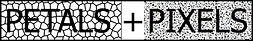 P+ P logo 2 Jpg.jpg