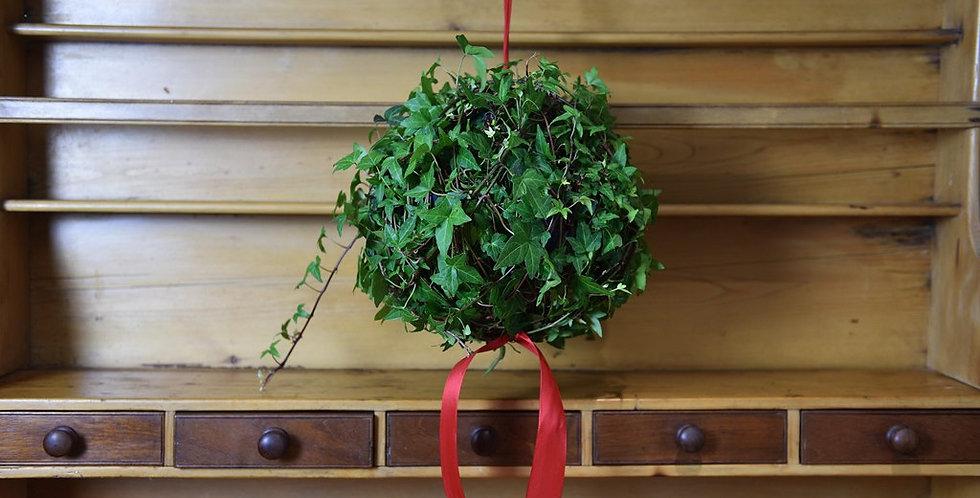 Hanging Ivy Globe