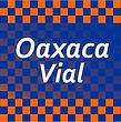 OAXACAVIAL2020.jpg