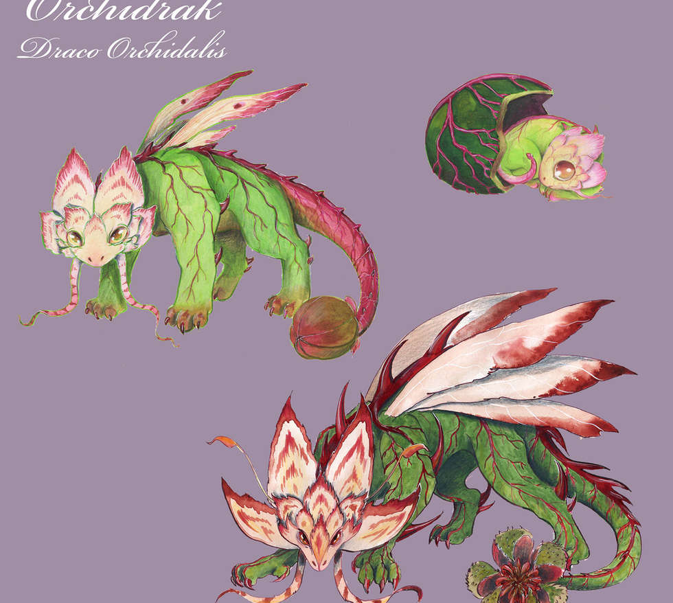 dragon fleur fiche copie.jpg